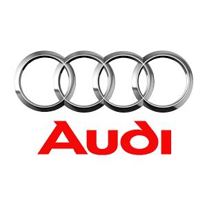 Clienti RICO - Audi